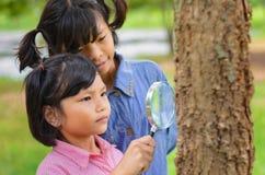 Mädchen wenig zwei, das den Baumstamm durch die Lupe überprüft Lizenzfreie Stockfotos