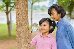 Mädchen wenig zwei, das den Baumstamm durch die Lupe überprüft Lizenzfreie Stockbilder