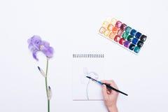 Mädchen zeichnet eine Blume in einem Notizbuch mit Aquarellen Stockfotos