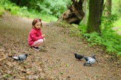 Mädchen zieht städtischen Tauben Tauben im Park ein lizenzfreies stockbild