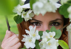 Mädchenauge hinter Baumblume Stockfotografie