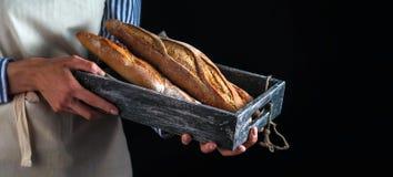 Mädchenbäcker, der frisch gebackene Stangenbrote hält Stockbilder