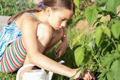 Mädchenbewässerungsanlagen Stockbild