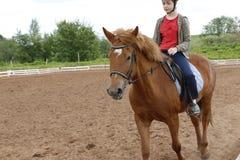 Mädchenfahrten auf Pferd auf einem Gebiet Stockfotografie