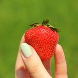 Mädchenfinger, die Erdbeere halten Stockbilder