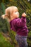 Mädchenholding auf Zaun Stockfoto