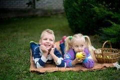 Mädchenjungenpicknick lizenzfreie stockfotos