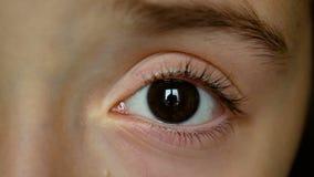 Mädchenkinderauge, dunkelbrauner linker Augenabschluß oben, Nahaufnahme des Mädchenkinderauges stock video