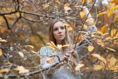 Mädchenmodell steht unter Walnussniederlassungen, wegdrückt ihre Hände Stockbild