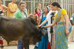 Mädchenpilger auf parikrama in Vrindavan Indien, Vrindavan, im November 2016 Lizenzfreie Stockfotos