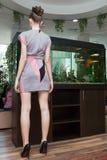 Mädchenrückseite im kurzen Kleid auf Hintergrund des Innenraums Stockfoto