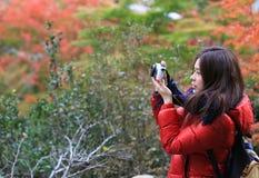 Mädchenreise, zum des Rotahorns mit dem Japan-Hintergrund zu sehen Lizenzfreie Stockbilder