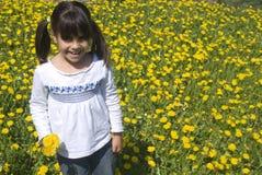 Mädchensammelnblumen Stockfotografie