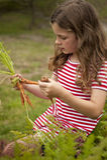Mädchensammelnkarotten im Gemüsegarten Stockbild