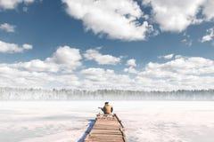 Mädchentourist sitzt auf der Brücke vor dem gefrorenen See und spielt Gitarre Stockfotografie