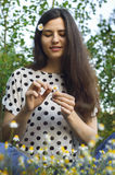 Mädchenvermutungen auf Kamille in der Wiese stockbild