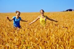 Mädchenweg durch goldenes Feld Stockbild