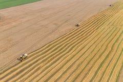 Mähdreschen ein Fall-Mais-Feld stockbild