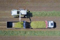 Mähdreschen ein grünes Feld entlädt Weizen Stockfoto
