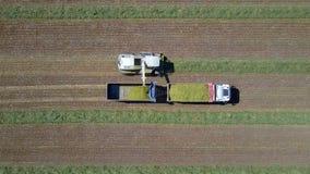 Mähdreschen ein grünes Feld entlädt Weizen Stockfotos