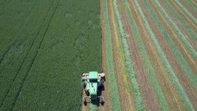 Mähdreschen ein großes grünes Feld Lizenzfreies Stockfoto