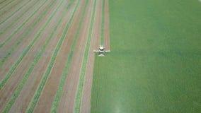 Mähdreschen ein großes grünes Feld Lizenzfreies Stockbild