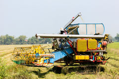 Mähdrescher auf dem Reisgebiet Lizenzfreie Stockfotografie