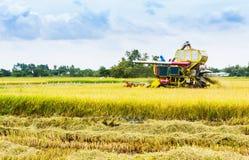 Mähdrescher auf einem Weizenfeld Lizenzfreie Stockbilder