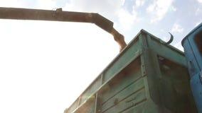 Mähdrescher, der Architekturkorn in einen Lastwagen entlädt Mähdrescherkorn stock footage