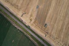 Mähdrescher, der auf dem goldenen Weizengebiet arbeitet Stockfotografie