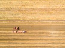 Mähdrescher, der auf dem goldenen Weizengebiet arbeitet Stockbild