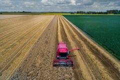 Mähdrescher, der auf dem Weizengebiet arbeitet Stockfotografie