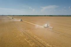 Mähdrescher, der an einem Weizenfeld arbeitet Mähdrescher AE lizenzfreies stockfoto