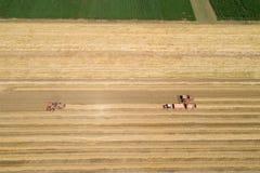 Mähdrescher, die auf dem goldenen Weizengebiet arbeiten Stockfotografie