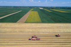 Mähdrescher, die auf dem goldenen Weizengebiet arbeiten Stockbild