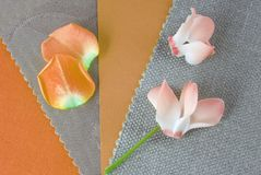 Mähdrescher entwerfen die Farben stockfotos