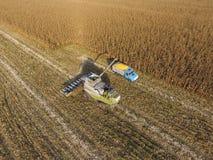 Mähdrescher gießt Maiskorn in den LKW-Körper Harveste Lizenzfreie Stockfotos