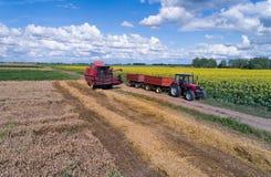 Mähdrescher und Traktor, die auf dem Weizengebiet arbeiten Stockbild
