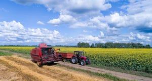 Mähdrescher und Traktor, die auf dem Weizengebiet arbeiten Lizenzfreies Stockfoto