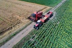 Mähdrescher und Traktor, die auf dem Weizengebiet arbeiten Lizenzfreies Stockbild