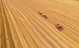 Mähdrescher und Traktor mit Anhängern auf dem Weizengebiet Stockfotografie