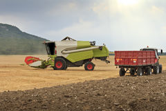 Mähdreschergeernteter Weizen stockbild