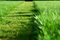 Mähen des Rasens Eine Perspektive des Schnittstreifens des grünen Grases stockfotos