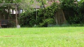 Mähen eines Rasens stock video footage