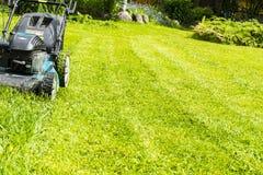 Mähende Rasen, Rasenmäher auf grünem Gras, Mähergrasausrüstung, mähendes Gärtnersorgfalt-Arbeitswerkzeug, Abschluss herauf Ansich stockfotografie