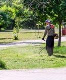 Mähender Rasen des jungen Arbeitnehmers mit Grastrimmer draußen am sonnigen Tag lizenzfreie stockfotografie