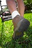 Mähender Rasen des Mannes Stockfotos