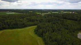 Mähendes Gras auf dem Feld nahe dem See Polonskoe stock video