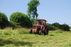 Mähendes Gras des Traktors stockfotos