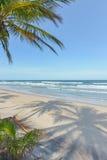 Mäktig paradisstrand på Itacaren Bahia Brazil Fotografering för Bildbyråer